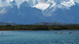 Parco Nazionale Torres del Paine