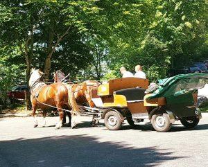 Carrozza trainata da cavalli per raggiungere il castello di Neuschwanstein